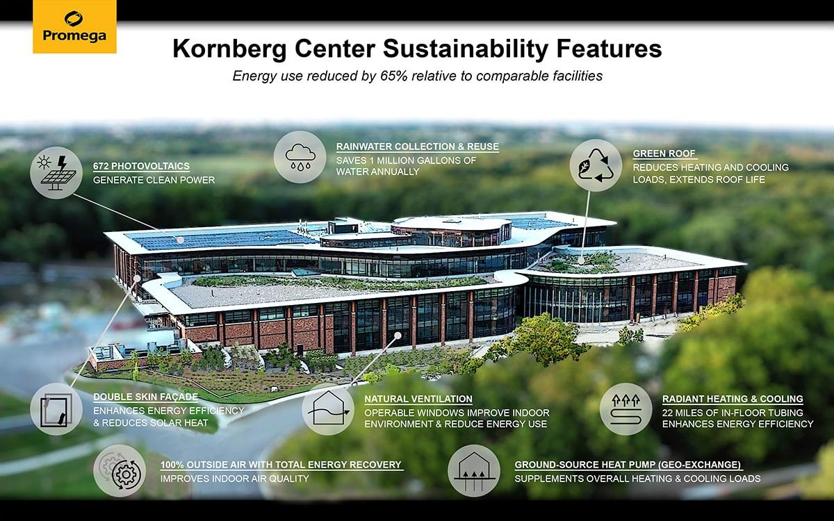24631912-kornberg-infographic-image-min