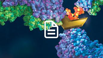 Article: Bioassays Power Combination Immunotherapy
