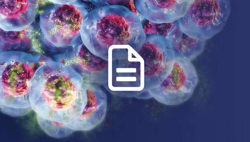 3D cell viability assay