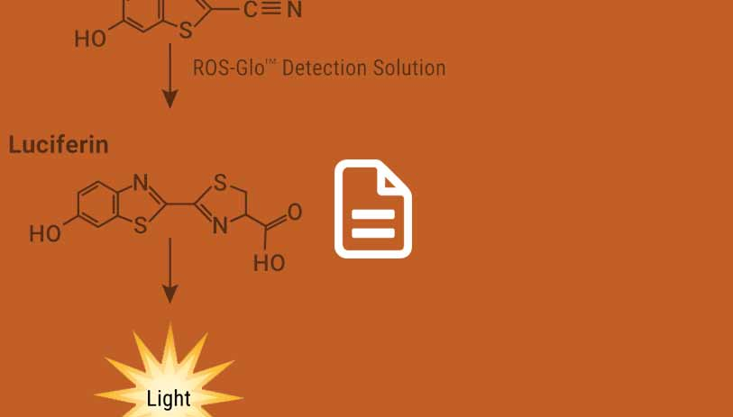 detection of ros