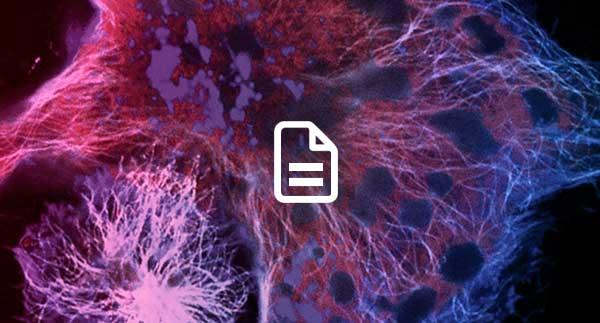 Energy Metabolism Webinar