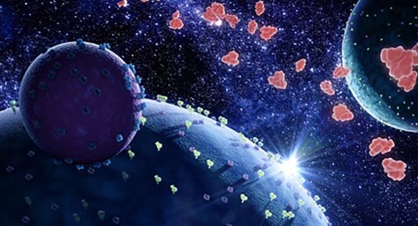 hibit-detection-reagents