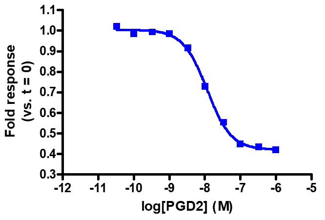 glosensor camp assay detection of g-alpha activity