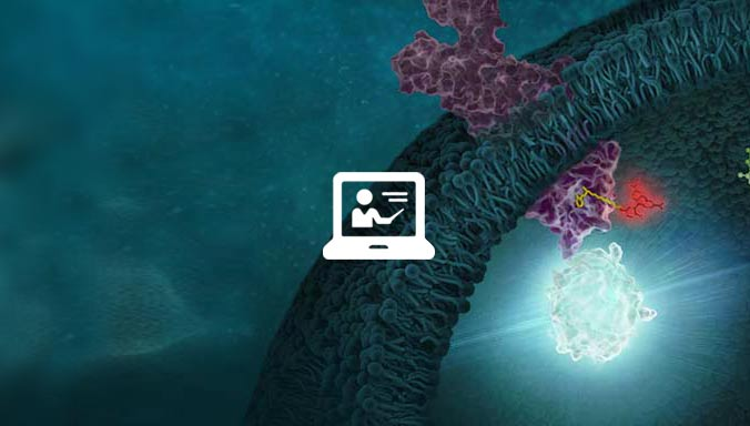 Webinar: Choosing a Bioactivity Assay