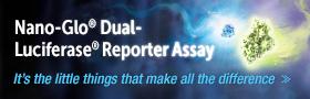 NanoDLR Dual-Luciferase Reporter Assay_280x90