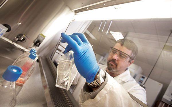 Custom and bulk product options for plant, food and cosmetic testing