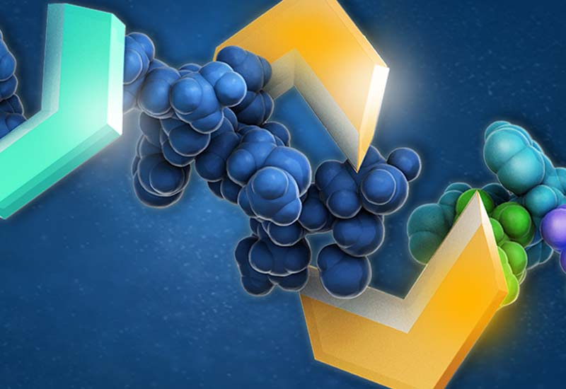 Fit for purpose enzyme manufacturing