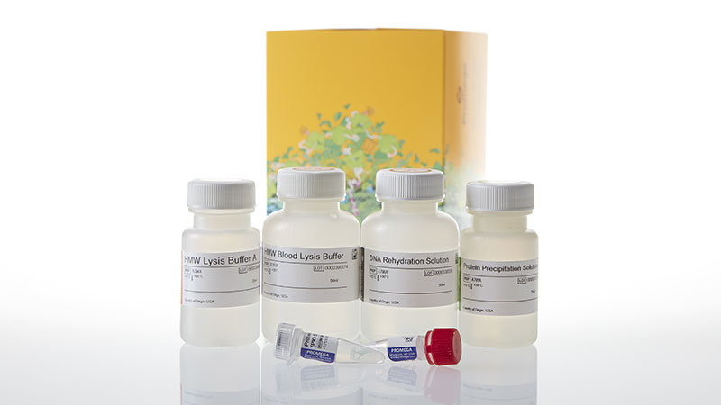 A2920_Wizard-HMW-DNA-Extraction-Kit_3