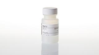 Magnesium Chloride Solution 25mM 25ml