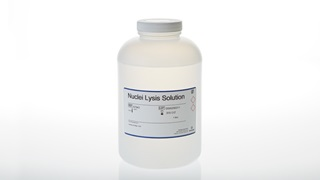 Nuclei Lysis Solution 1 liter