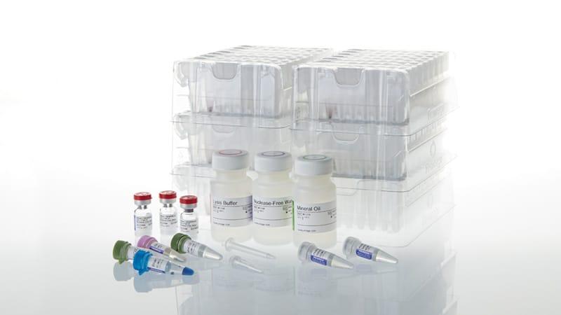 Maxwell 16 LEV RNA FFPE Purification Kit 48 preps