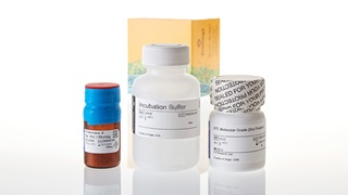 DC6740_Tissue-and-Hair-Extraction-Kit--for-use-with-DNA-IQ-_3
