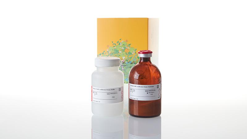 E2520_Steady-Glo--Luciferase-Assay-System_3