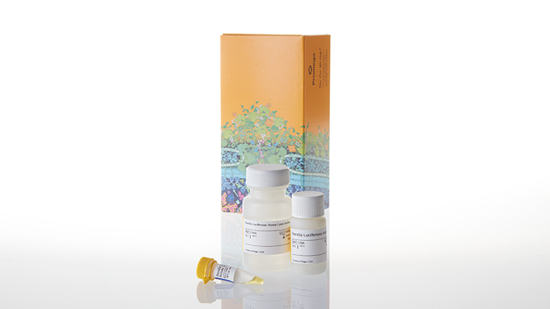 E2810_Renilla-Luciferase-Assay-System--100-Asy_3
