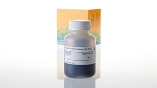 G7473_Magne--Protein-G-Beads--20--Slurry_3