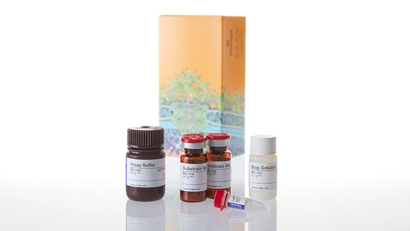 G7890_CytoTox-ONE--Homogen-Membrn-Integrity_3