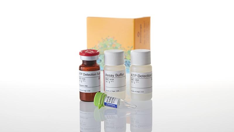 G8000_Mitochondrial-ToxGlo--Assay---10ml_3