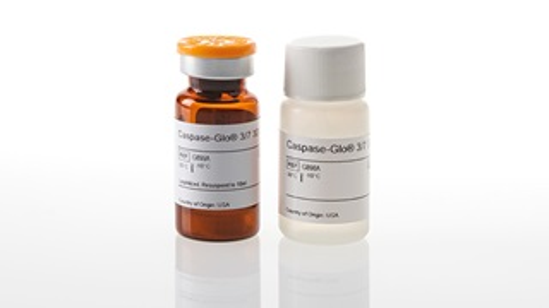 G8981_Caspase-Glo-3-7-3D_3