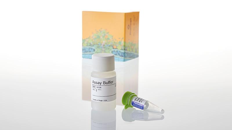 G9260_CytoTox-Fluor--Cytotoxicity-Assay--10ml_3