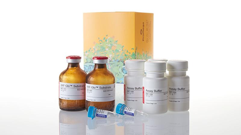 G9272_MultiTox-Glo-Multiplex-Cytotoxicity-Assa_3