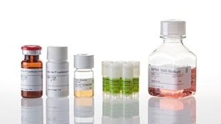 J1655_T-Cell Activation Bioassay IL2-5X_3