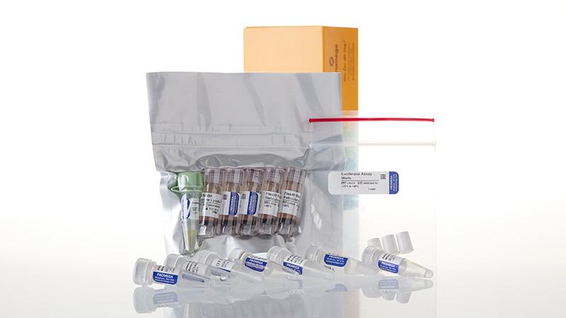 L4540_Flexi Rabbit Reticulocyte Lysate System_3