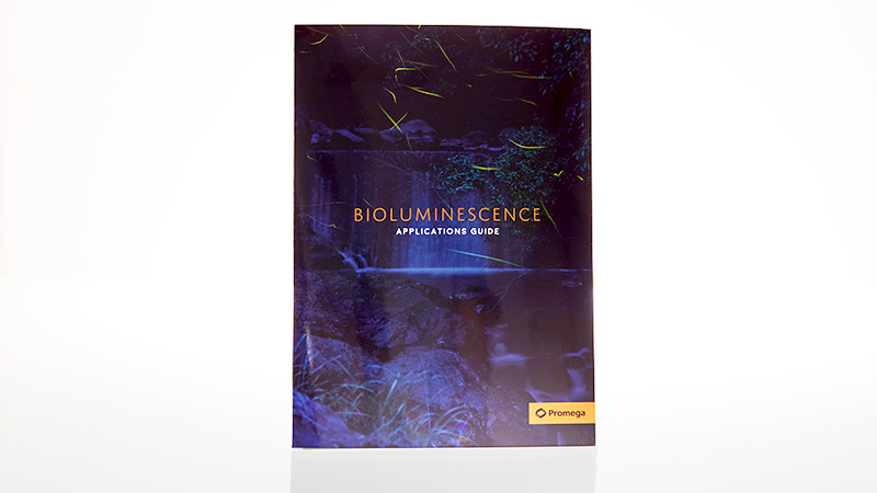 LUC1991_BIOLUMINESCENCE_APPLICATIONS_GUIDE_3