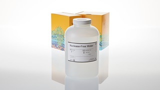 Nuclease-Free Water 1,000ml