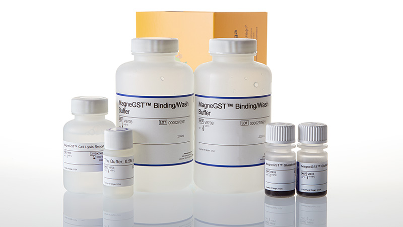 V8604_MagneGST--Protein-Purification-System_3