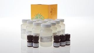 VB2030_Lumit--Immunoassay-Detection-Reagent-A_3