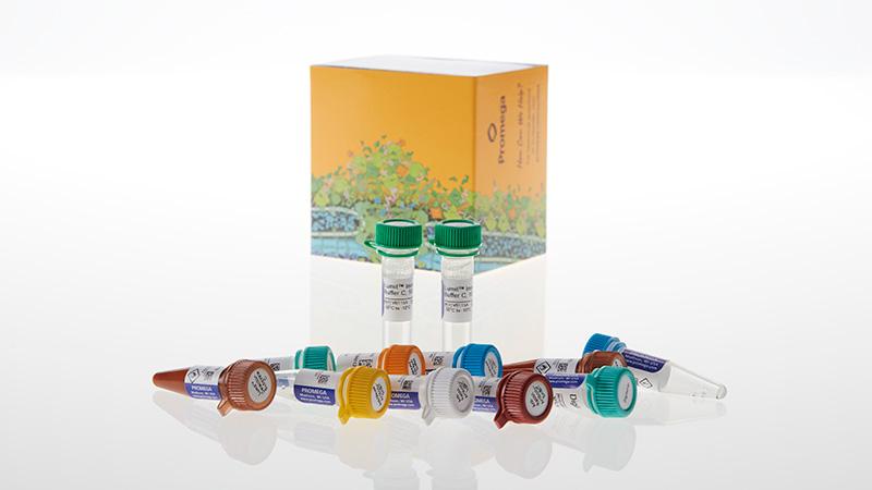 W1220_Lumit--Immunoassay-Cellular-System---Starter-Kit--200-assays_3