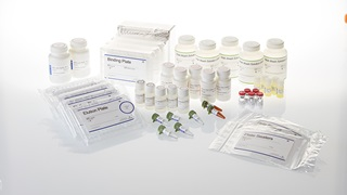 Z3505 Promega SV 96 Total RNA Isolation System 5 x 96
