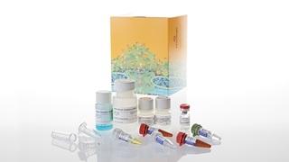 Z6110 ReliaPrep™ RNA Tissue Miniprep System, 10 preps