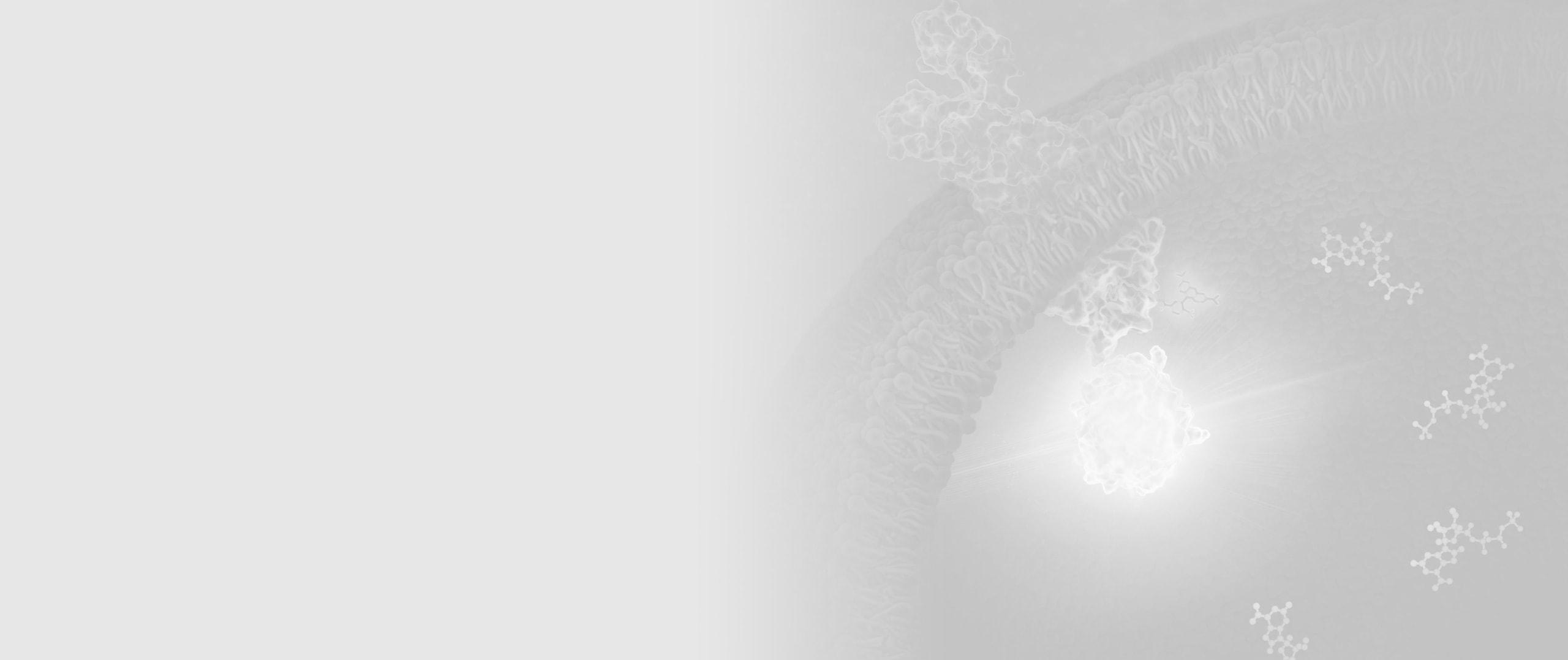 36566039-NanoBRET-TE-Kinases-Overview-Image