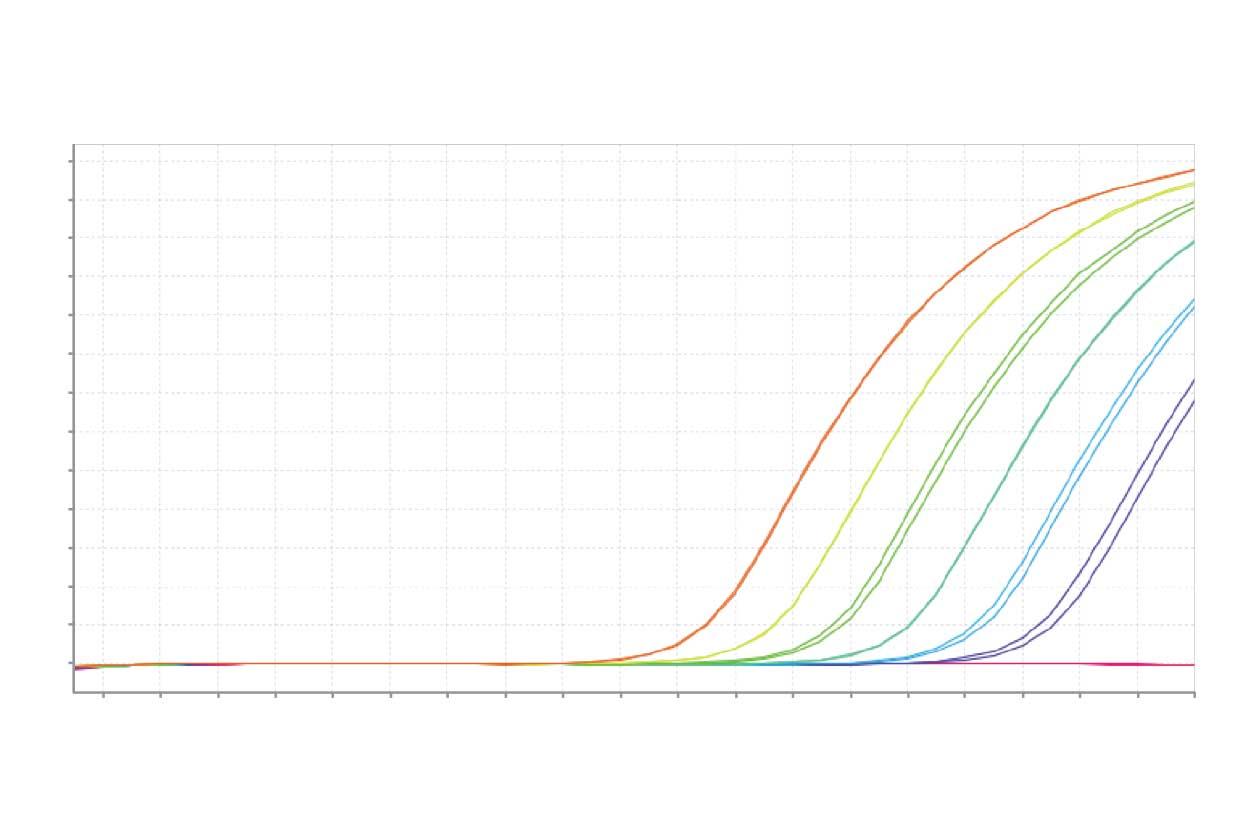 qPCR curves