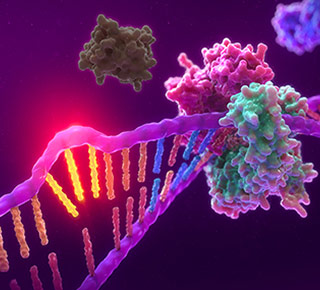 3D image of MSI showing unrepaired mismatched nucleotides