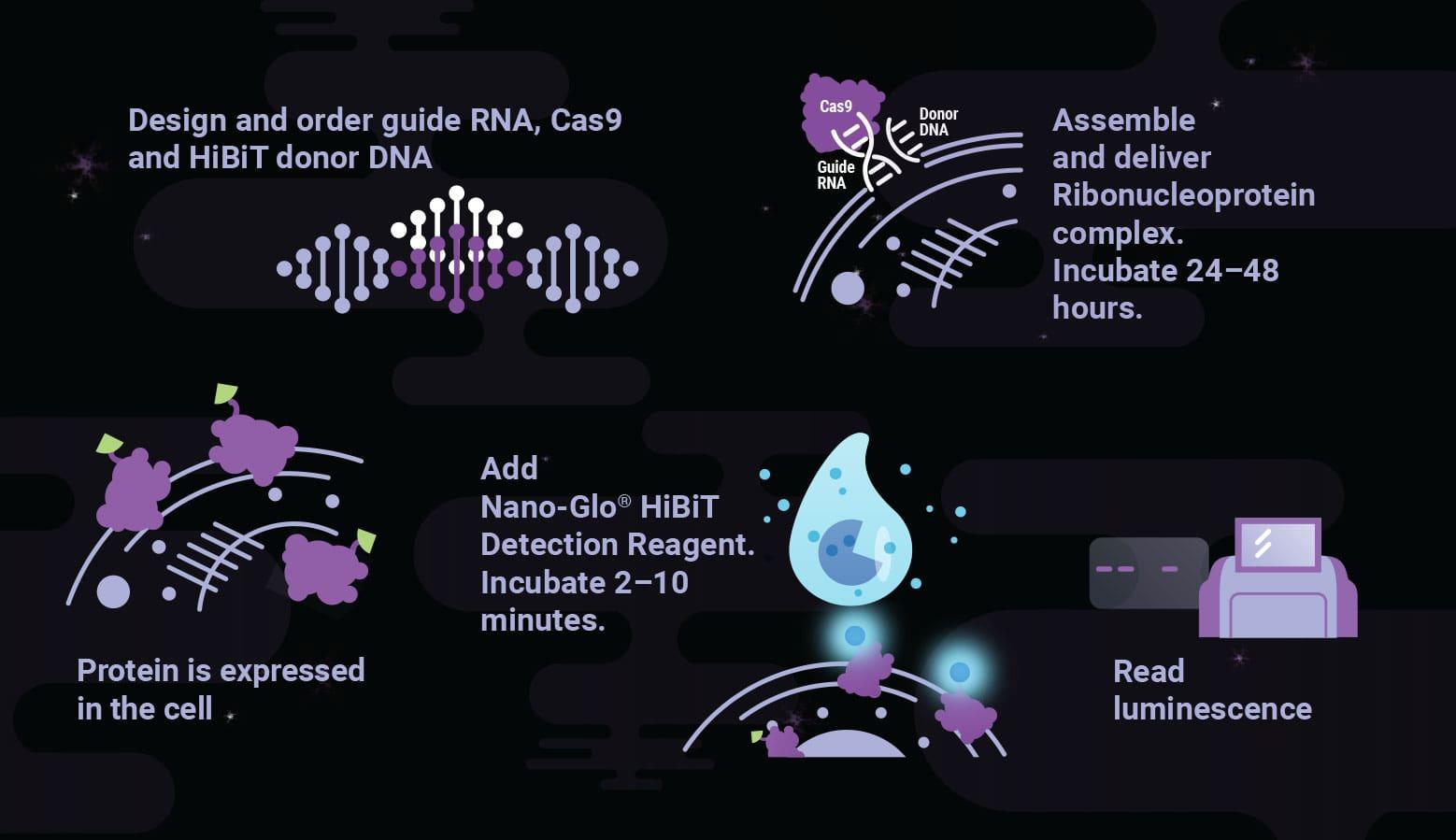 quantify-regulated-protein-abundance-min