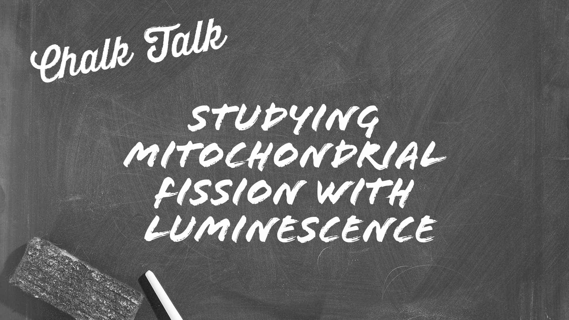 Chalk Talk on Studying Mitochondrial Fission with NanoBiT