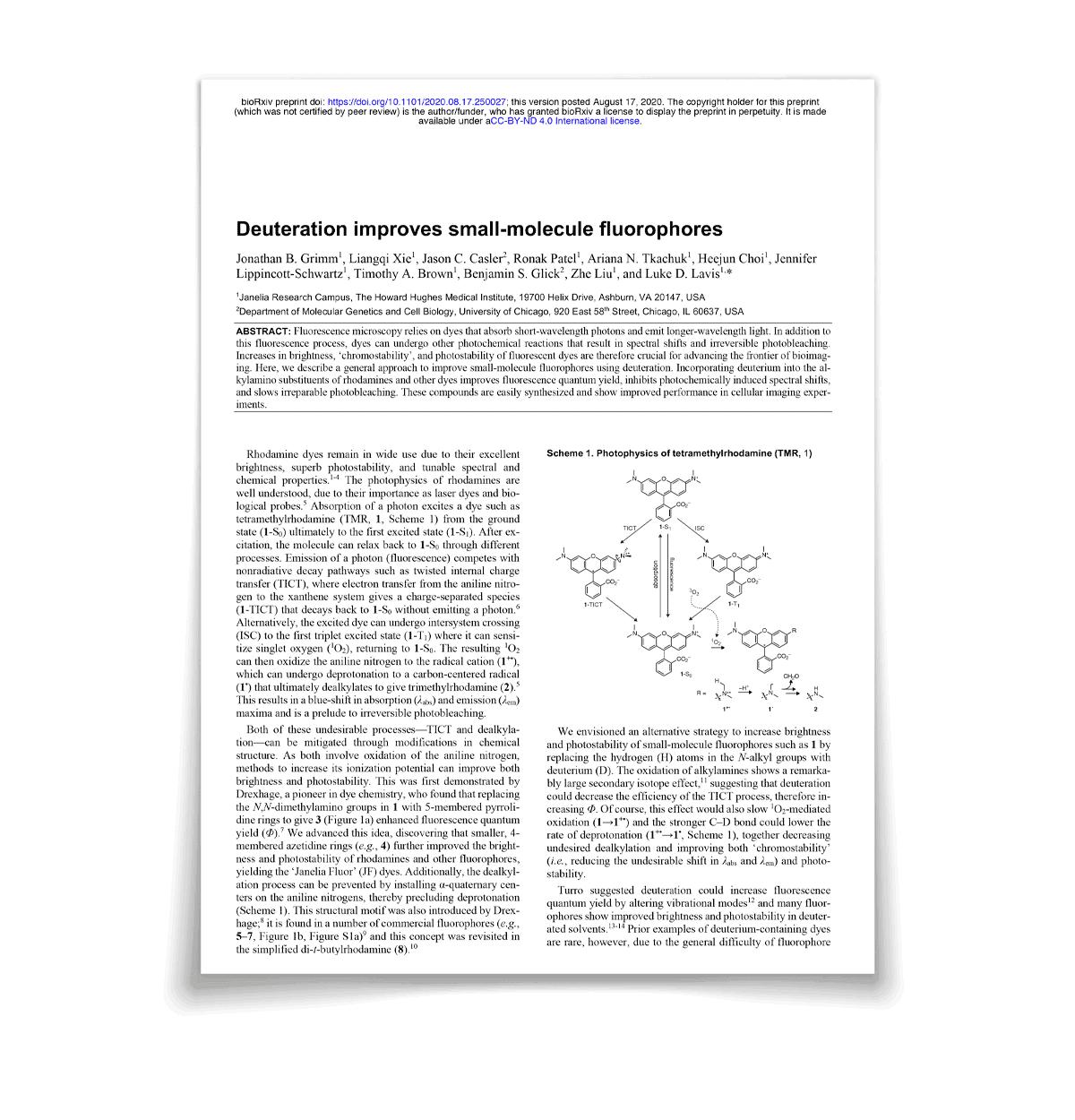 Deuteration improves small-molecule fluorophores