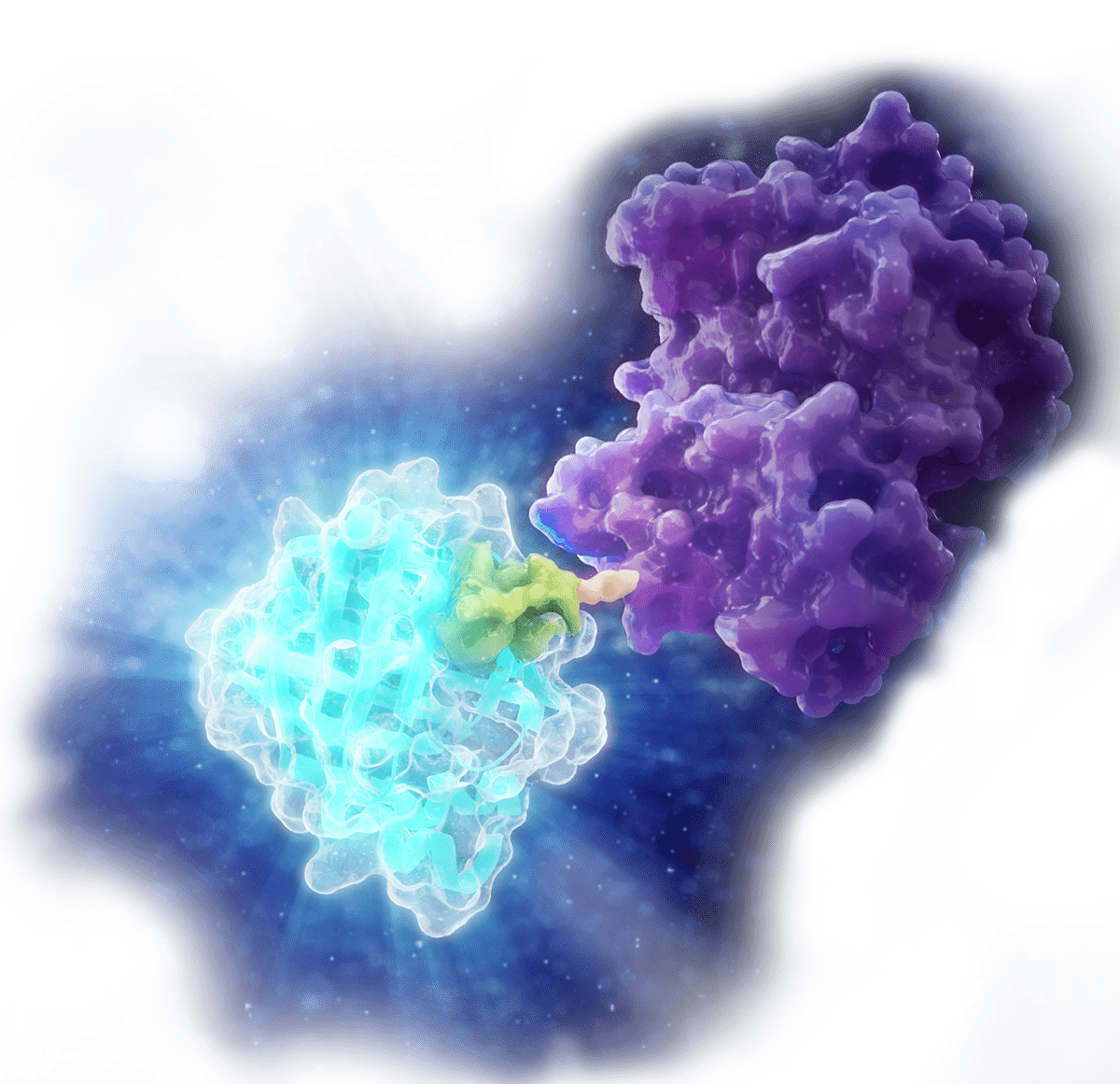 Protein Quantitation & Detection Hero Art Floating
