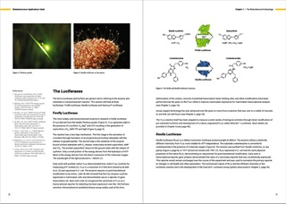 62667222-pages-8-9-bioluminescence-applications-guide-product-page