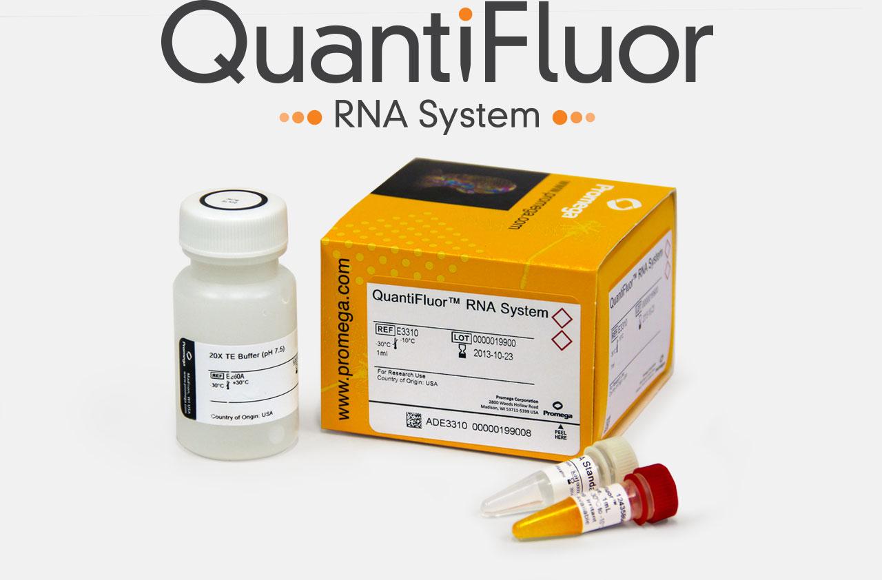 e3310o-RNA-overview