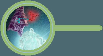 NanoBRET Glowing 3D Technology Image