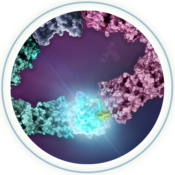 lumit-gloing-circles-ws2021-na
