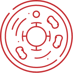 Red Target Cell Icon