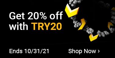 try20-wnb-ws2021-na