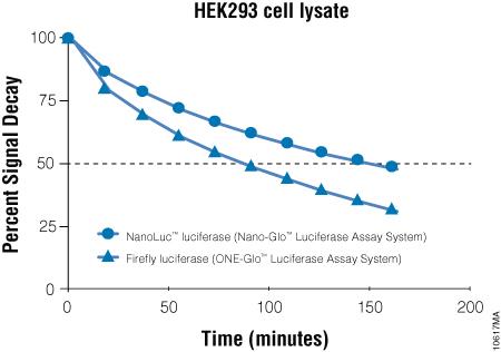Signal decay kinetics for Nano-Glo® Luciferase Assay Reagent.