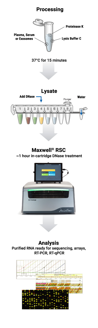 Automated miRNA extraction from plasma serum or exosomes protocol