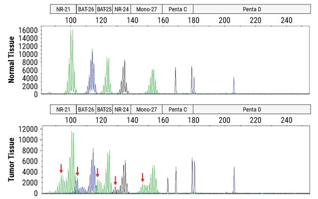 Representative microsatellite instability data.
