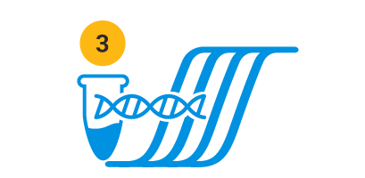 Direct PCR workflow Step 3: Amplify and Analyze